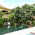 Big pool and mango tree