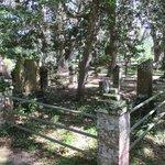Micanopy Cemetery