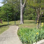 1 acre in-town lot