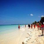 Plage Ile Cayo Blanco Excursion avec les dauphins et Catamaran