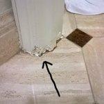 Water damaged floor boards