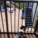 Bryson on the balcony room #206