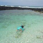 Snorkel muy bonita vista y muy segura.en Ttortuga Bay