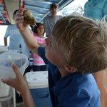Mote Aquarium interpreted boat tour.