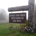 Want to bike the south shore with me...?