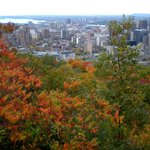 View of downtown Montreal and Fleuve S Laurent from atop Mont Royal