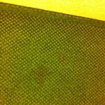 Big red stains on carpet