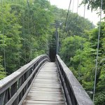Bridge to rooms