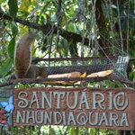 Photo of Santuario Nhundiaquara