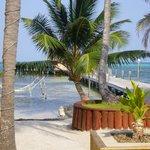 veiw from bar patio/beach