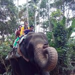 Family ride on Elephant