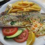 very nice fish!