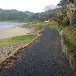 Nice paths