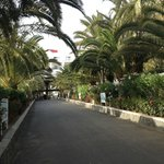 Парк на территории отеля