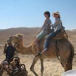 катаемся на верблюде