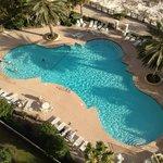 Avalon pool