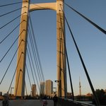 Мост, который соединяетчасти парка