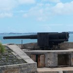 Historical cannon
