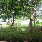 Nang Thong Bay resort