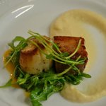 Pan roasted New England Diver Scallop with Vermont Pork Belly/Celery Root Puree/arugula salad
