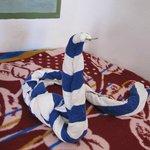 Schlange aus Handtüchern