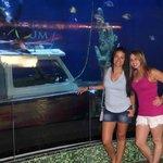 Aquarium  Plaza Isla