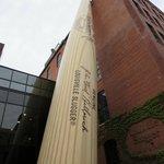 Huge bat at the entrance