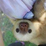 Tito loves cuddles!