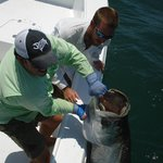 Fishing Charters with Captain Matt Santiago