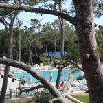 Vue de la chambre sur les tennis et piscine