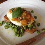 charred chick peas, fava beans and buratta on crostini