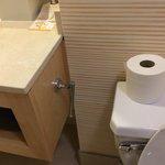 Broken toilet paper holder