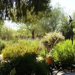 view of the butterfly garden from a garden table