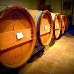 The barrells