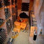 Wine Tour / Cellar