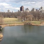 View from Belvedere Castle (March 2014)