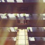 Filtered light in the atrium