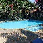 La piscine et deux bungalows