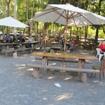 Outdoor picnic tables under trees