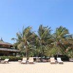 вид на отель с пляжа, все утопает в зелени