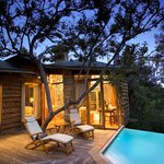 Tsala Treetop Lodge Suite with Private Pool