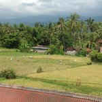 From window facing the rice paddies and mountain