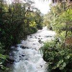 Vous devez franchir cette rivière pour entrer dans Maquipucuna!