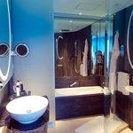 Bathroom interior (shower area + bathtub)