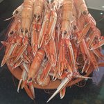 Langoustine from here in the bay