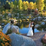 A wedding on our property - one of a kind!