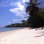 Beach seatnu