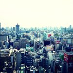 spectacular Shinjuku/Kabukicho view from room