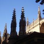 le guglie della catedrale