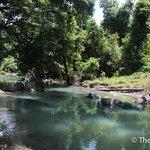 塔繽保護區的溪流
